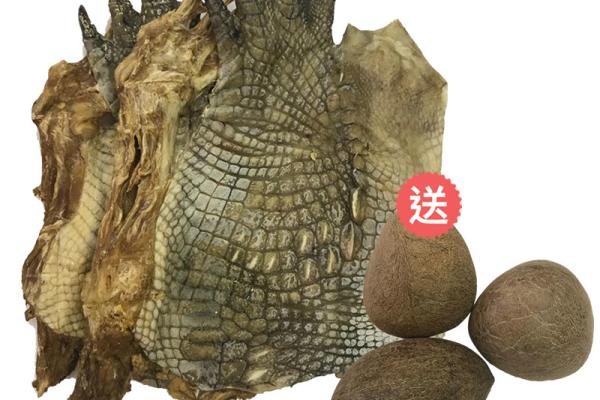 鱷魚類產品