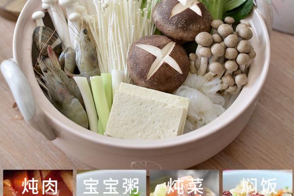 1_熊貓明火耐高溫陶土小砂鍋 (0 (4)